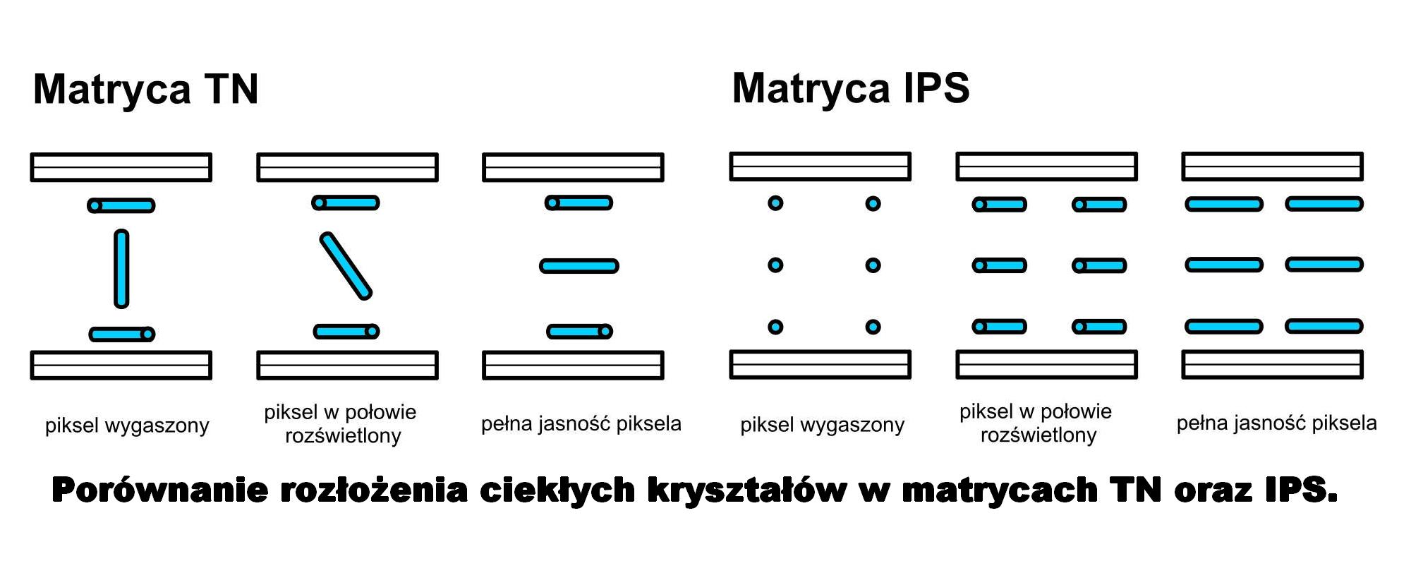Porównanie układu ciekłych kryształów w matrycy TN i IPS.