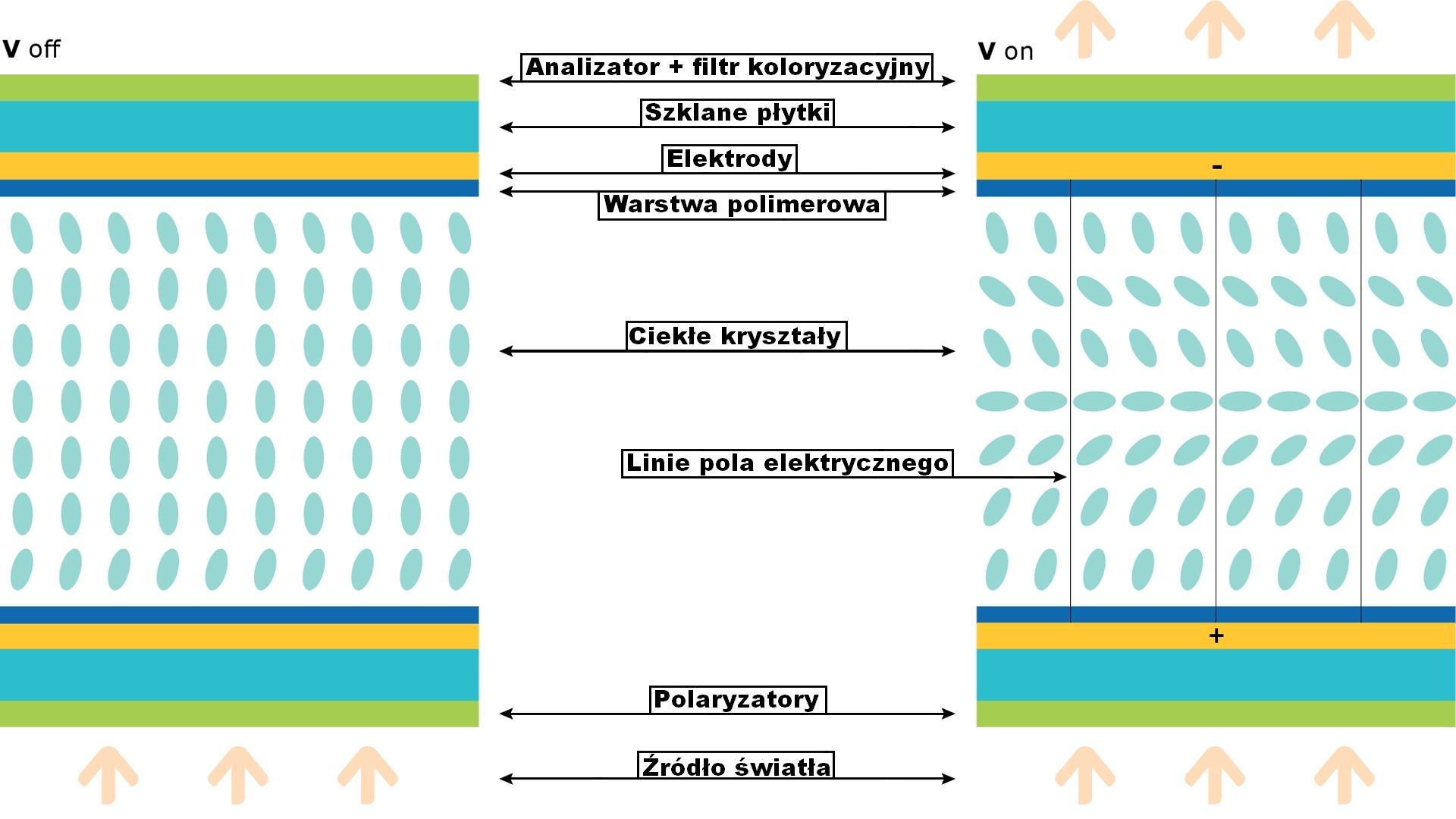 Przekrój budowy matrycy Vertical Alignment